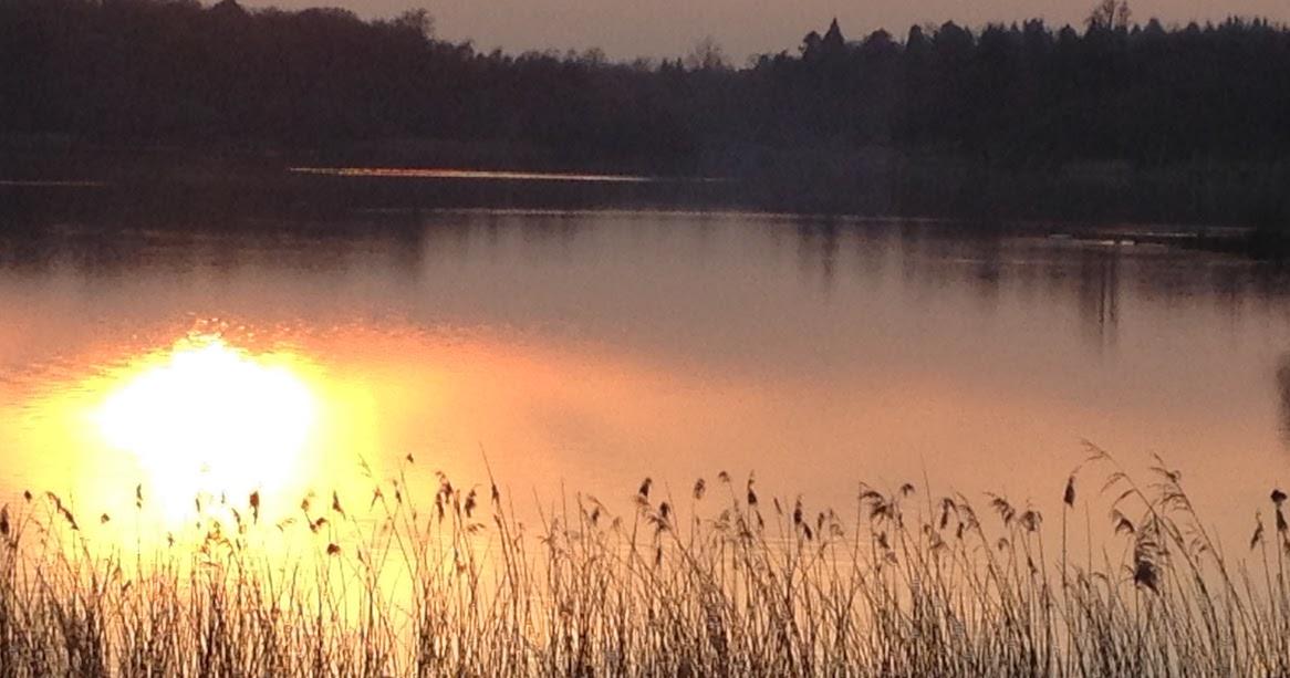 sunset_saville
