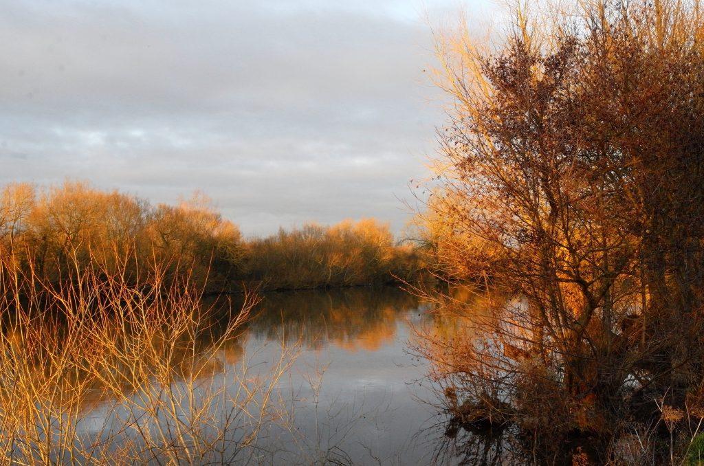 Autumn Colours Thames Path